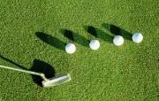 浪漫高尔夫上辑 壁纸3 浪漫高尔夫上辑 体育壁纸