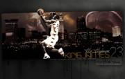勒布朗 詹姆斯 LeBron James 壁纸5 勒布朗詹姆斯Le 体育壁纸