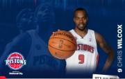 NBA 2009 10赛季底特律活塞球员阵容桌面壁纸 Chris Wilcoxbr桌面壁纸 NBA200910赛季底特律活塞球员阵容桌面壁纸 体育壁纸
