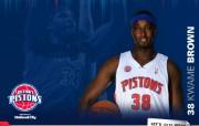 NBA 2009 10赛季底特律活塞球员阵容桌面壁纸 Kwame Brown桌面壁纸 NBA200910赛季底特律活塞球员阵容桌面壁纸 体育壁纸