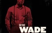 NBA 2009 10赛季迈阿密热火桌面壁纸 Dwyane Wade桌面壁纸 NBA200910赛季迈阿密热火桌面壁纸 体育壁纸