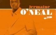 NBA 2009 10赛季迈阿密热火桌面壁纸 Jermaine O Neal 桌面壁纸 NBA200910赛季迈阿密热火桌面壁纸 体育壁纸