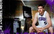 NBA 2009 10赛季萨克拉门托国王桌面壁纸 Andres Nocioni 5桌面壁纸 NBA200910赛季萨克拉门托国王桌面壁纸 体育壁纸