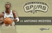 NBA 2009 10赛季圣安东尼奥马刺球员阵容桌面壁纸 Antonio McDyess NBA200910赛季圣安东尼奥马刺球员阵容桌面壁纸 体育壁纸