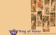 NBA菲尼克斯太阳壁纸 体育壁纸