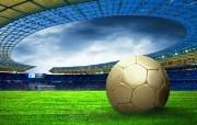 世界杯足球高清宽屏壁纸 壁纸27 世界杯足球高清宽屏壁 体育壁纸