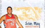 夏洛特山猫队NBA壁纸 壁纸2 夏洛特山猫队NBA壁纸 体育壁纸