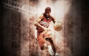 夏洛特山猫队NBA壁纸 壁纸4 夏洛特山猫队NBA壁纸 体育壁纸