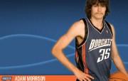 夏洛特山猫队NBA壁纸 壁纸10 夏洛特山猫队NBA壁纸 体育壁纸