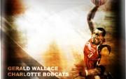 夏洛特山猫队NBA壁纸 壁纸11 夏洛特山猫队NBA壁纸 体育壁纸