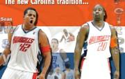 夏洛特山猫队NBA壁纸 壁纸15 夏洛特山猫队NBA壁纸 体育壁纸