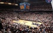 亚特兰大老鹰队NBA 体育壁纸