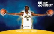 NBA 印第安纳步行者队2008 09赛季官方桌面壁纸 Roy Hibbert图片壁纸 印第安纳步行者队200809赛季壁纸 体育壁纸