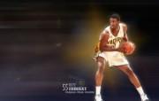 NBA Roy Hibbert 图片壁纸 印第安纳步行者队2010 球星壁纸 体育壁纸