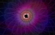 Apple主题 80 8 Apple主题 系统壁纸
