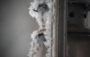 冬日摄影高清宽屏壁纸 第二集 2560x1600 壁纸2 冬日摄影高清宽屏壁纸 系统壁纸
