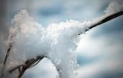 冬日摄影高清宽屏壁纸 第二集 2560x1600 壁纸4 冬日摄影高清宽屏壁纸 系统壁纸
