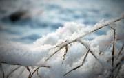 冬日摄影高清宽屏壁纸 第二集 2560x1600 壁纸6 冬日摄影高清宽屏壁纸 系统壁纸