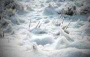 冬日摄影高清宽屏壁纸 第二集 2560x1600 壁纸9 冬日摄影高清宽屏壁纸 系统壁纸
