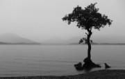 高清精美水景海洋湖泊瀑布宽屏壁纸 壁纸29 高清精美水景海洋湖泊 系统壁纸