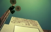 高清宽屏植物风光静物摄影壁纸 2009 09 26 壁纸10 高清宽屏植物风光静物 系统壁纸