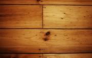高清宽屏植物风光静物摄影壁纸 2009 09 26 壁纸25 高清宽屏植物风光静物 系统壁纸