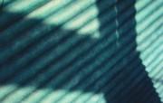 精品经典 实物摄影电脑PS宽屏壁纸 四 壁纸21 精品经典:实物摄影电 系统壁纸