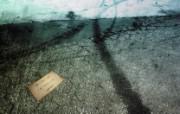 精品经典 实物摄影电脑PS宽屏壁纸 四 壁纸49 精品经典:实物摄影电 系统壁纸