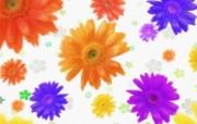 朦胧花朵柔美 宽屏壁纸 壁纸2 朦胧花朵柔美 宽屏壁 系统壁纸