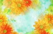 朦胧花朵柔美 宽屏壁纸 壁纸10 朦胧花朵柔美 宽屏壁 系统壁纸