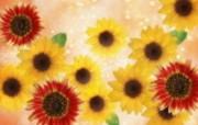 朦胧花朵柔美 宽屏壁纸 壁纸12 朦胧花朵柔美 宽屏壁 系统壁纸