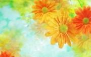 朦胧花朵柔美 宽屏壁纸 壁纸16 朦胧花朵柔美 宽屏壁 系统壁纸