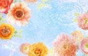 朦胧花朵柔美 宽屏壁纸 壁纸20 朦胧花朵柔美 宽屏壁 系统壁纸
