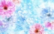 朦胧花朵柔美 宽屏壁纸 壁纸22 朦胧花朵柔美 宽屏壁 系统壁纸