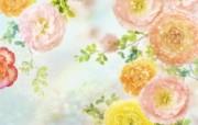 朦胧花朵柔美 宽屏壁纸 壁纸81 朦胧花朵柔美 宽屏壁 系统壁纸