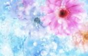 朦胧花朵柔美 宽屏壁纸 壁纸34 朦胧花朵柔美 宽屏壁 系统壁纸