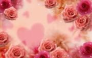 朦胧花朵柔美 宽屏壁纸 壁纸35 朦胧花朵柔美 宽屏壁 系统壁纸