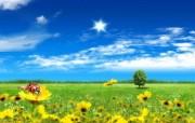梦想家园 最美好的日子宽屏壁纸 壁纸17 梦想家园:最美好的日 系统壁纸
