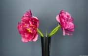 七夕节花卉专辑 系统壁纸