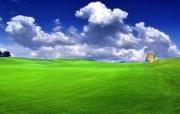 Vista高清宽屏经典壁纸 壁纸22 Vista高清宽屏经 系统壁纸