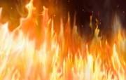 火焰特写 炫彩壁纸