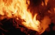 火焰特写 2 5 火焰特写 炫彩壁纸