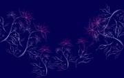 炫彩花纹 10 10 炫彩花纹 炫彩壁纸