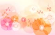 炫彩花纹 9 20 炫彩花纹 炫彩壁纸