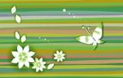 炫彩花纹 9 17 炫彩花纹 炫彩壁纸