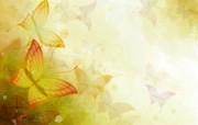 炫彩花卉合成 1 11 炫彩花卉合成 炫彩壁纸