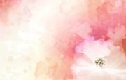 炫彩花卉合成 1 9 炫彩花卉合成 炫彩壁纸
