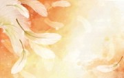 炫彩花卉合成 1 4 炫彩花卉合成 炫彩壁纸