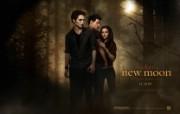 暮光之城2 新月 The Twilight Saga New Moon 桌面壁纸 北美新上映电影壁纸合集2009年11月版 影视壁纸