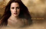 暮色2 新月The Twilight Saga New Moon 桌面壁纸 北美新上映电影壁纸合集2009年11月版 影视壁纸
